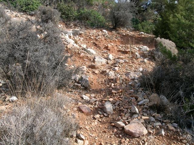 steiler Hang mit spärlichem Boden und starker Erosion durch Ziegentritt