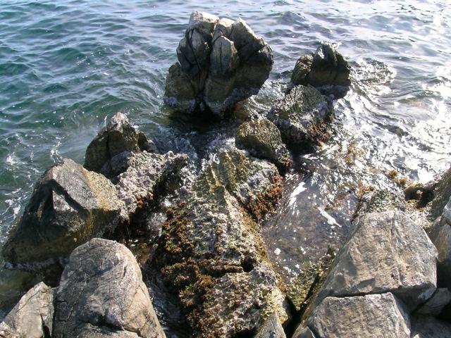 zerklüftete Marmorküste