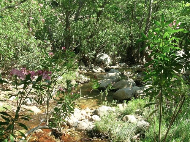 der Fluss bei Kinidaros