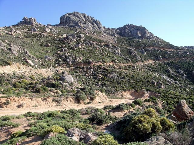 die Fahrstraße nach Agios Artemios